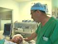 hypnose hôpital Argentan